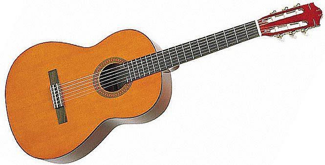 klasična kitara hohner